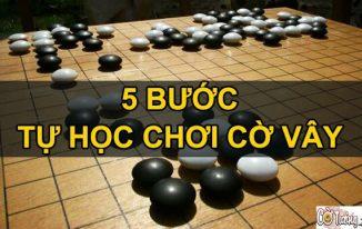 học chơi cờ vây